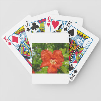 Closeup of red pomegranate flower bicycle playing cards