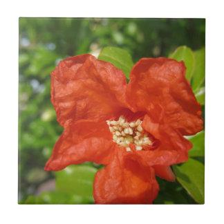 Closeup of red pomegranate flower ceramic tile