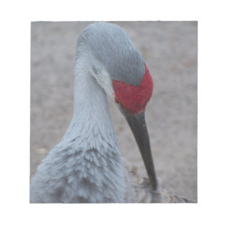 Closeup of the face of a Sand Hill Crane Notepad