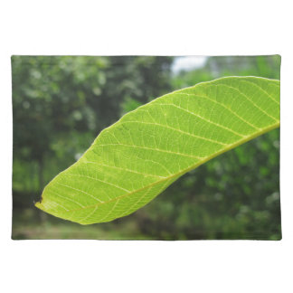 Closeup of walnut leaf lit by sunlight placemat