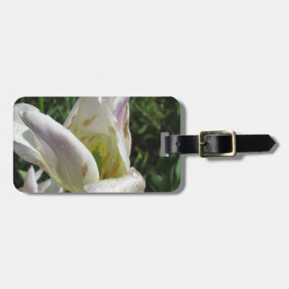 Closeup of white iris flower with droplets luggage tag