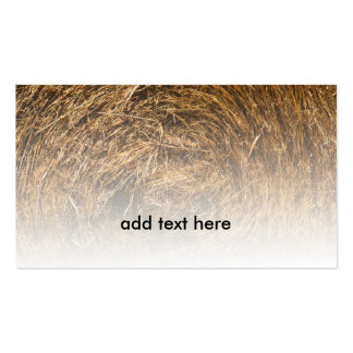 closeup view of rolled hay pack of standard business cards