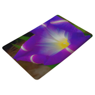 Closing Time for Morning Glories Floor Mat