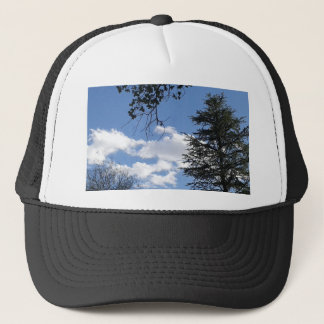Cloud And Trees Trucker Hat