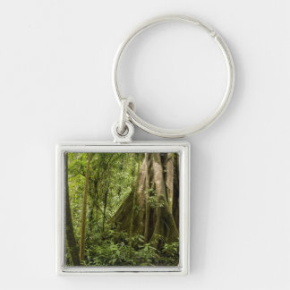 Cloud forest, Bosque de Paz, Costa Rica Silver-Colored Square Key Ring