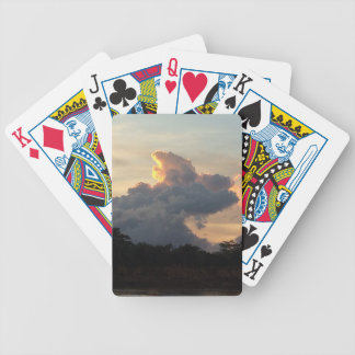 Cloud Shark Bicycle Playing Cards