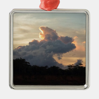 Cloud Shark Silver-Colored Square Decoration