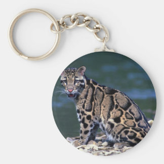 Clouded Leopard-eye contact Key Chains