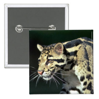 Clouded leopard head shot pins