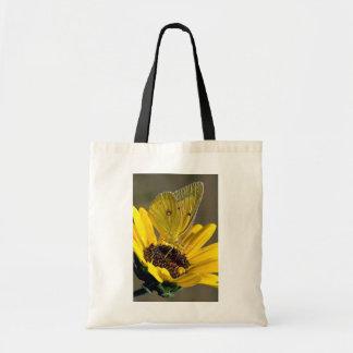 Clouded sulphur on yellow flower bag