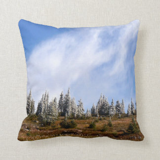 Clouds and frost cushion