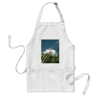 CLOUDS AND GRASS APRONS