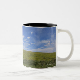 Clouds and Lawn, Tuscany, Italy Two-Tone Coffee Mug