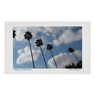 Clouds and Palm Trees Poster