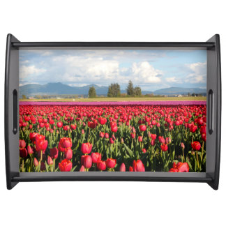 Clouds Mountains and Tulips Serving Tray