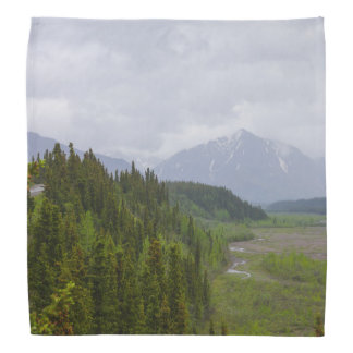 Cloudy At Denali Bandana