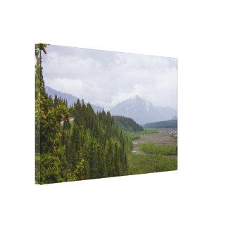 Cloudy At Denali Canvas Print