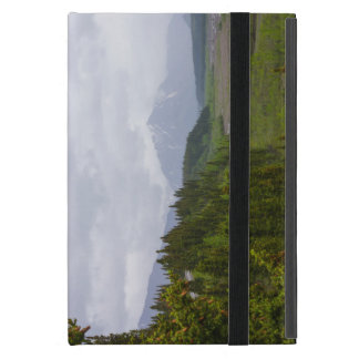 Cloudy At Denali Case For iPad Mini