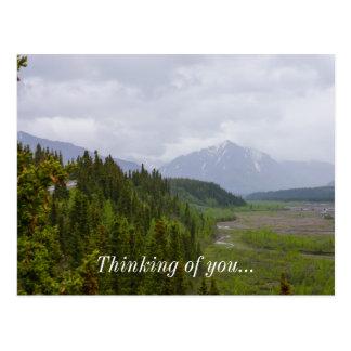 Cloudy At Denali Postcard
