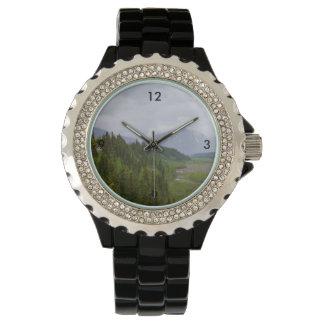 Cloudy At Denali Watch