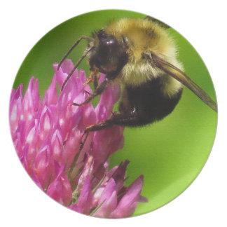 Clover Flowers Floral Bumblebee Garden Plate