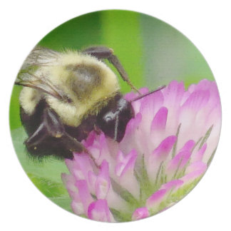 Clover Flowers Floral Bumblebee Garden Plates