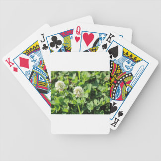 Clover & Flowers Pt 2 Bicycle Playing Cards