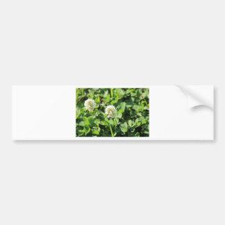 Clover & Flowers Pt 2 Bumper Sticker