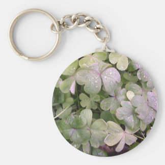Clover in the rain keychains