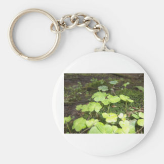 Clover Patch Basic Round Button Key Ring