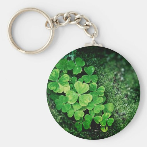 clover patch on moss key chains