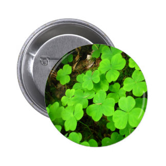 Clover Patch Pin