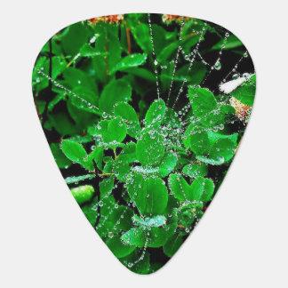 Clover Web Dew ,Groverallman Guitar Pick