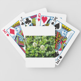 Clovers and Flowers Bicycle Playing Cards
