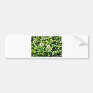 Clovers and Flowers Bumper Sticker