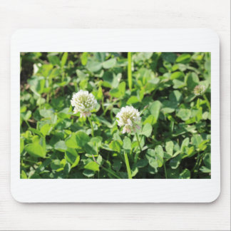 Clovers and Flowers Mouse Pad