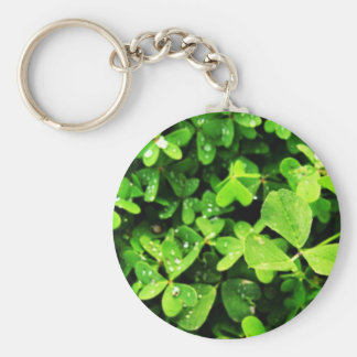 Clovers Keychains