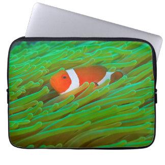 "Clown Anemonefish Neoprene Laptop Sleeve (13"")"