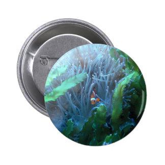 Clown Fish 6 Cm Round Badge
