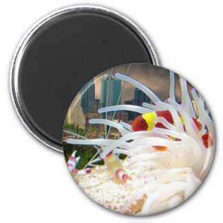 Clown Fish 6 Cm Round Magnet