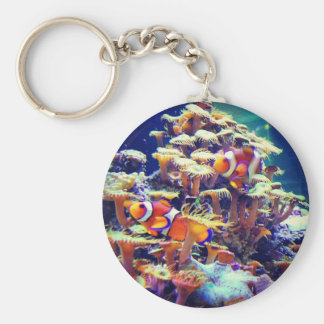 Clown Fish Basic Round Button Key Ring