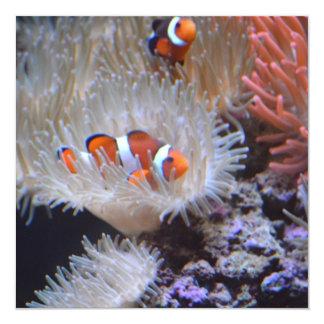 Clownfish 13 Cm X 13 Cm Square Invitation Card