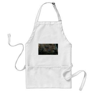 clownfish apron