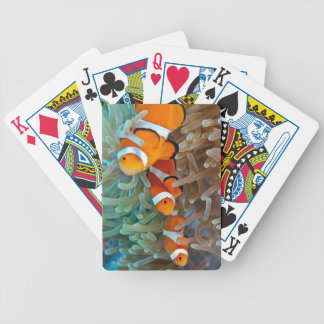 Clownfish Bicycle Playing Cards