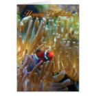 Clownfish Birthday Card - Photography Card - Happy