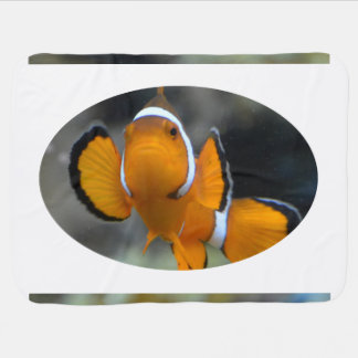 clownfish facing front receiving blanket