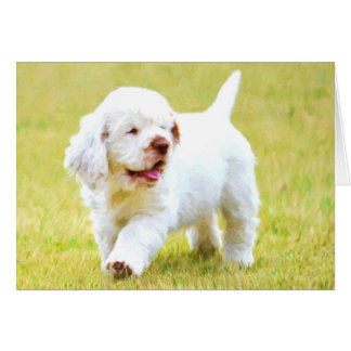 Clumber Spaniel Puppy Greeting Cards