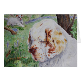 Clumber Spaniel - Spring Woodland - card