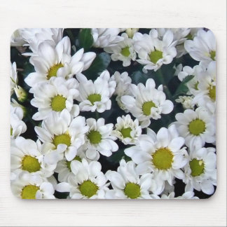 Cluster of fresh white Daisies Mousepad
