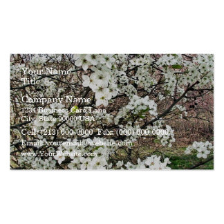 Cluster of Pear Tree Blossoms Business Card Templates